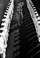 Inspection of personnel aboard a U.S. submarine at New London submarine base, Conn.  August 1943.  Attributed to Comdr. Edward J. Steichen.  (Navy)<br /> Exact Date Shot Unknown<br /> NARA FILE #:  080-G-468153<br /> WAR & CONFLICT BOOK #:  947