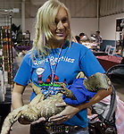 Natalie Vegel cradles Nessie, a 15 pound black throat monitor at the Reno Repticon event held on Sunday afternoon, February 10, 2013 at the Reno Livestock Events Center in Reno, Nevada.