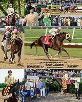 Belle Gallantey winning 2014 The Delaware Handicap
