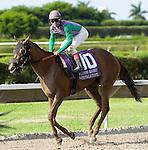 10 July 2010: Don'ttalktome and Jockey Manoel Cruz after the Princess Rooney Handicap at Calder Race Course in Miami Gardens, FL.