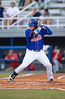Dash Winningham (10) of the Kingsport Mets at bat against the Elizabethton Twins at Hunter Wright Stadium on July 8, 2015 in Kingsport, Tennessee.  The Mets defeated the Twins 8-2. (Brian Westerholt/Four Seam Images)