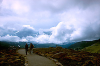 Visitors to Rocky Mountain National Park<br />