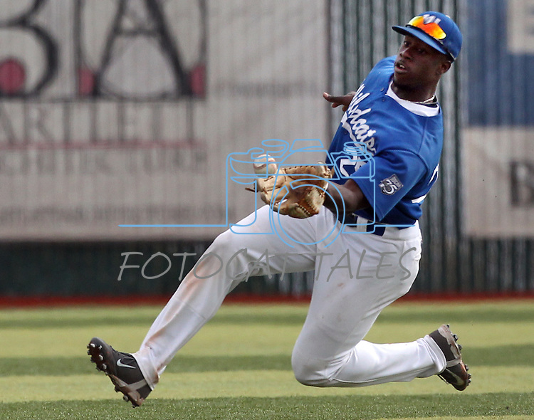 Wildcats Donald Glover makes a sliding catch during the first game of a doubleheader against South Mountain Community College at WNC in Carson City, Nev., on Friday, Jan. 25, 2013. WNC won the first game 5-1. .Photo by Cathleen Allison/Nevada Photo Source
