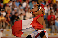 Vicky Vicuna, the World Championship mascot. The United States beat Italy 3-1 in the 2005 FIFA World Championship tournament in Peru, September 20, 2005.