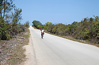 Zanzibar, Tanzania.  A Highway on the eastern side of the island.  Soil is thin and poor on the eastern side, with coral near the surface.  (Foreground left)
