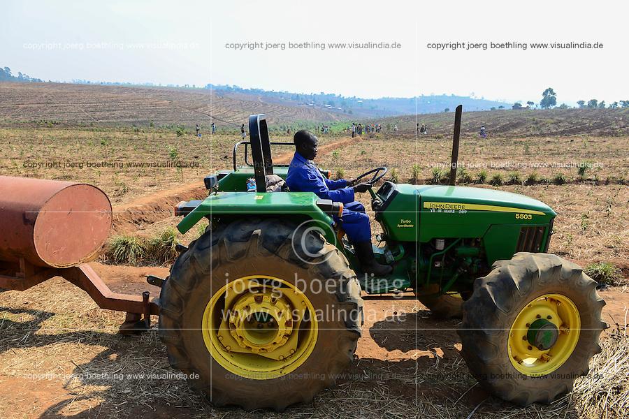 Malawi, Thyolo, Makandi Tea Estate, a fair trade tea plantation, John Deere Tractor, planting of new tea shrubs