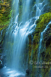 Proxy Falls, Three Sisters Wilderness, Willamette-Deschutes National Forest, Oregon