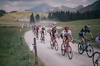 Jasper Stuyven (BEL/Trek-Segafredo) in the peloton over the gravel roads up the Montée du plateau des Glières (HC/1390m)<br /> <br /> Stage 10: Annecy > Le Grand-Bornand (159km)<br /> <br /> 105th Tour de France 2018<br /> ©kramon