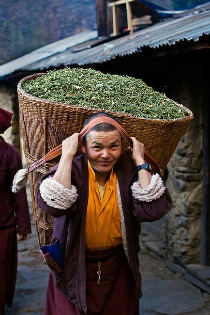 A monk carries a DOLKO or basket of animal feed at a remote TIBETAN BUDDHIST MONASTERY - NEPAL