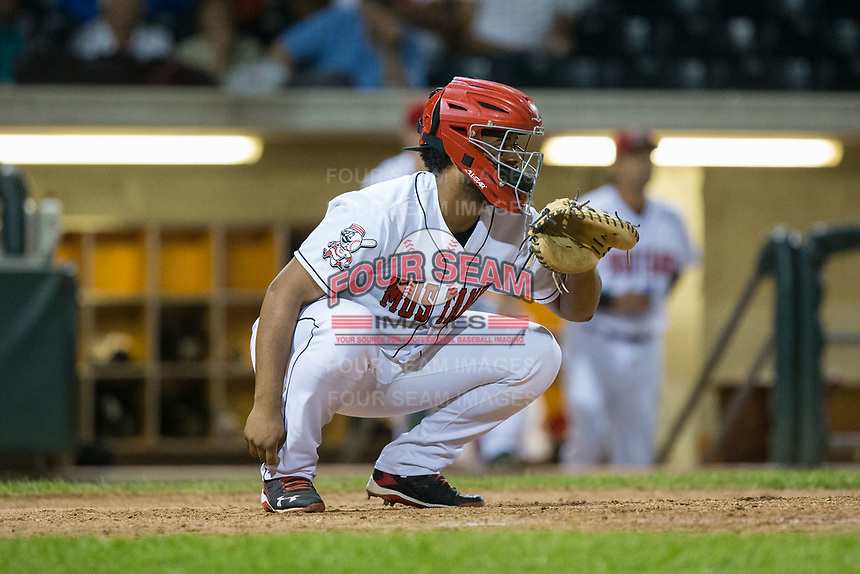 Billings Mustangs catcher Hendrik Clementina (56) warms up his pitcher between innings of the game against the Missoula Osprey at Dehler Park on August 21, 2017 in Billings, Montana.  The Osprey defeated the Mustangs 10-4.  (Brian Westerholt/Four Seam Images)