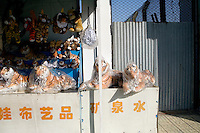 Souvenir vendors stand outside a kiosk selling stuffed tigers and other toys at the Siberian Tiger Park in Haerbin, Heilongjiang, China.  The Siberian Tiger Park is described as a preserve to protect Siberian tigers from extinction through captive breeding.  Visitors to the park can purchase live chickens and other meat to throw to the tigers.  The Siberian tiger is also known as the Manchurian tiger.