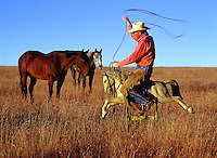 Humorous image of a cowboy and lasso astride a toy pony ride as two horses look on.