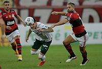30th May 2021; Maracana Stadium, Rio de Janeiro, Brazil; Brazilian Serie A, Flamengo versus Palmeiras; Diego Ribas of Flamengo and Matías Viña of Palmeiras