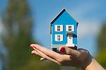 Holding Blue Model House