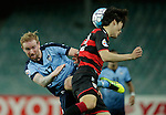 SYDNEY - APRIL 05:  David Carney of Sydney FC and Jun Hui Park of Pohang Steelers compete during the AFC Champions League group H match between Sydney FC and Pohang Steelers on 05 April 2016 held at Sydney Football Stadium in Sydney, Australia. Photo by Mark Metcalfe / Power Sport Images   *** Local Caption *** David Carney;Jun Hui Park