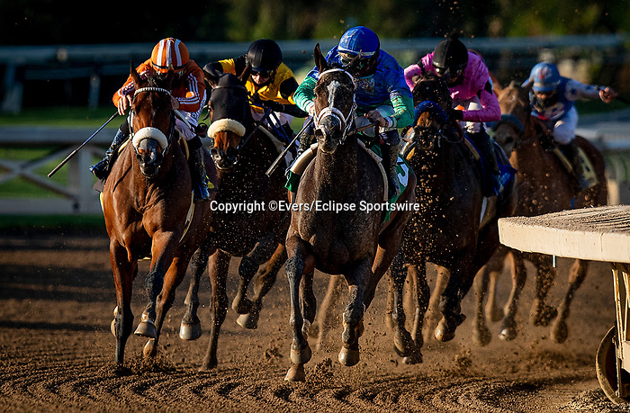 January 09, 2021: Sanenus and Umberto Rispoli power off the turn to win the La Canada Stakes at Santa Anita Park in Arcadia, California on January 9, 2021. Evers/Eclipse Sportswire/CSM