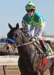 6 March 2010: Wall Street Wonder and jockey Channing Hill return after winning The Toboggan at Aqueduct Racetrack in Ozone Park NY.
