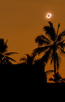 Solar eclipse with silhouetted palm trees at Puuhonua Honaunau, Big Island