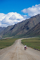 Bicycle touring on the James Dalton Highway, (Haul Road) Alaska Pipeline travels this 500 mile stretch of gravel road, Alaska