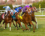 OZONE PARK, NEW YORK - NOV 25: Rainbow Heir#4, ridden by Irad Ortiz Jr., wins the first running of the Aqueduct Turf Sprint Championship Stakes, at Aqueduct Racetrack, on November25, 2017 in Ozone Park, New York. ( Photo by Sue Kawczynski/Eclipse Sportswire/Getty Images)