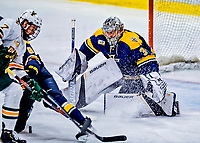 26 January 2019: Merrimack College Warrior Goaltender Logan Halladay, a Sophomore from Cary, NC, in third period action against the University of Vermont Catamounts at Gutterson Fieldhouse in Burlington, Vermont. The Warriors fell to the Catamounts 4-3 in overtime after tying up the game in the dyeing seconds of the third period of their America East conference game. Mandatory Credit: Ed Wolfstein Photo *** RAW (NEF) Image File Available ***