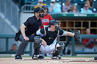 Charlotte Knights catcher Zack Collins (8) sets a target as home plate umpire Travis Godec looks on during the game against the Indianapolis Indians at BB&T BallPark on April 27, 2019 in Charlotte, North Carolina. The Indians defeated the Knights 8-4. (Brian Westerholt/Four Seam Images)