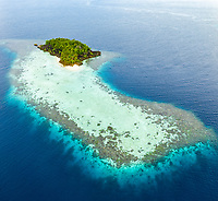 aerial view of a remote island, surrounded by a beautiful coral reef, Raja Ampat Islands, West Papua, Indonesia, Pacific Ocean