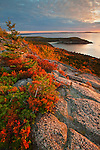 Sunrise view from the false summit of Gorham Mountain, Acadia National Park, Maine, USA