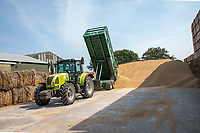 Temporary storage of grain in farm yard - Lincolshire, August