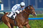DUBAI,UNITED ARAB EMIRATES-MARCH 31: HEavy Metal,ridden by Ryan Moore,wins the Godolphin Mile at Meydan Racecourse on March 31,2018 in Dubai,United Arab Emirates (Photo by Kaz Ishida/Eclipse Sportswire/Getty Images)