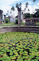 Tanzania Zanzibar Ruins of the Muhurubi palace