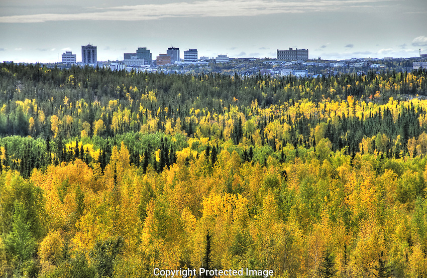Fall colours and skyline of Yellowknife, NT