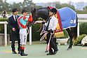 Horse Racing : Daily Hai Nisai Stakes at Kyoto Racecourse
