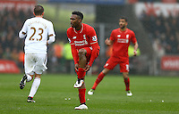 Daniel Sturridge of Liverpool pulls up his socks during the Barclays Premier League match between Swansea City and Liverpool played at the Liberty Stadium, Swansea on 1st May 2016