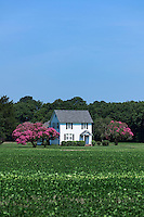 Country house, Northampton County, Virginia, USA