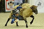 Muttin Bustin during The 53rd annual Washington International Horse Show at the Verizon Center in  Washington D.C. on 10/27/11 (Ryan Lasek / Eclipse Sportwire)