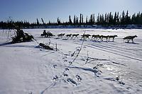 Sunday March 11, 2007   ----    Jeff King runs past a stump and moose tracks on the Unalakleet river  nearing Unalakleet on Sunday afternoon.