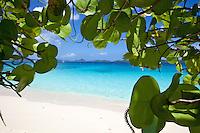 Honeymoon Beach.Virgin Islands National Park.<br /> St John, US Virgin Islands