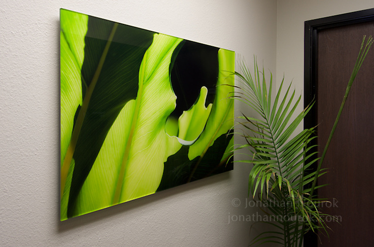 Commissioned photograph for an attorney's office in Riverside, California.
