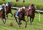 Inspector Lynley  (no. 3) wins the Fasig-Tipton Lure Stakes Aug. 11, 2018 at the Saratoga Race Course, Saratoga Springs, NY.  Ridden by  Jose Lezcano, and trained by Claude McGaughey III,  Inspector Lynley finished 3/4 lengths in front of Projected (no. 1).  (Bruce Dudek/Eclipse Sportswire)