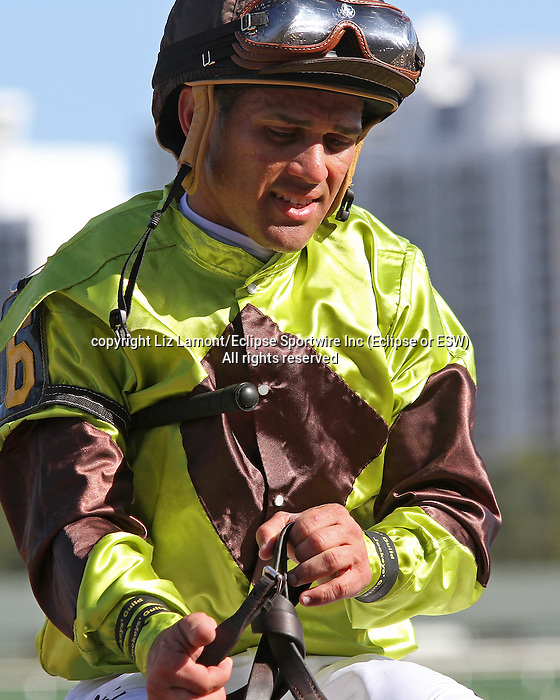 Scenes from Gulfstream Park. Constitution (KY) with jockey Javier Castellano on board wins wire to wire by 3 1/4 lengths in his allowance race at Gulfstream Park.  Hallandale Beach, Florida 02-22-2014