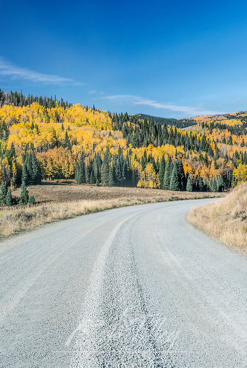USA, CO, Routt NF, Autuman Road in the Flat Tops Wilderness