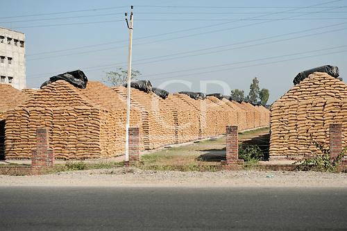 Amritsar, Punjab, India. Grain stores by the road.