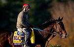 November 2, 2020: Higher Power, trained by trainer John W. Sadler, exercises in preparation for the Breeders' Cup Classic at Keeneland Racetrack in Lexington, Kentucky on November 2, 2020. Alex Evers/Eclipse Sportswire/Breeders Cup