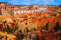 "view on ""hoodoos"" from Fairyland Loop trail, Bryce Canyon National Park, Utah, USA"