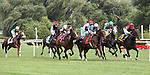 8 August 2009: The field into the 1st turn of the 20th running of the G1 The Beverly D. at Arlington Park in Arlington Heights, Illinois.