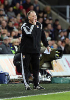 Pictured: West Ham manager Neil McDonald Saturday 10 January 2015<br /> Re: Barclays Premier League, Swansea City FC v West Ham United at the Liberty Stadium, south Wales, UK