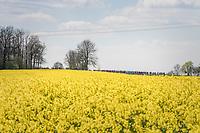 postcard views on the way to Huy<br /> <br /> 81st La Flèche Wallonne (1.UWT)<br /> One Day Race: Binche › Huy (200.5km)