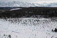 A  team runs in a swamp in the Farewell Lake area between Rohn and Nikolai with the Alaska Range in the background during the 2018 Iditarod race on Tuesday afternoon March 06, 2018. <br /> <br /> Photo by Jeff Schultz/SchultzPhoto.com  (C) 2018  ALL RIGHTS RESERVED