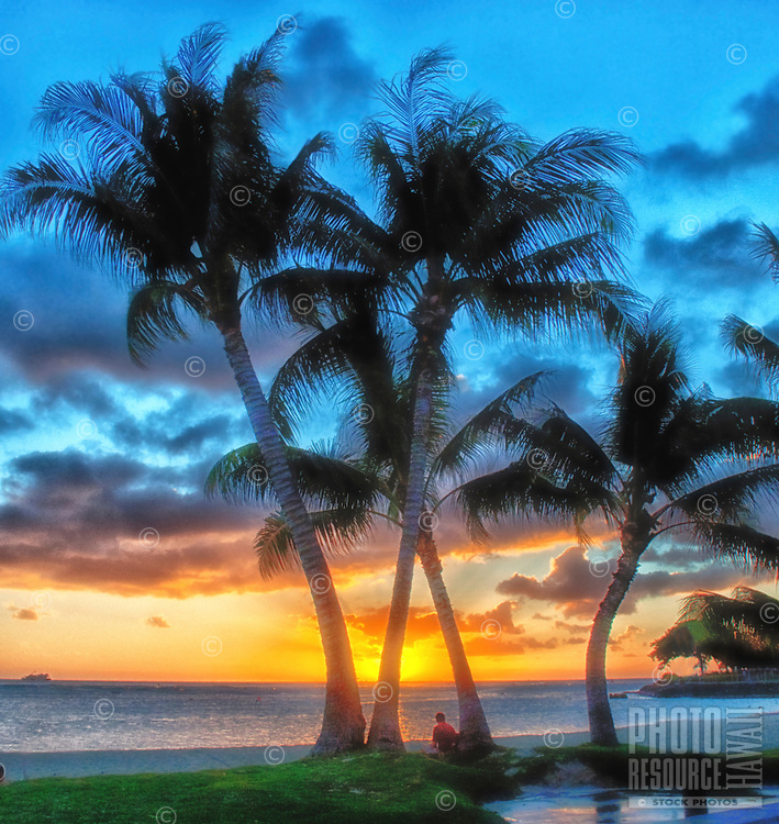 A visitor contemplates the gorgeous sunset while sitting under palm trees at Ala Moana Beach Park, O'ahu.